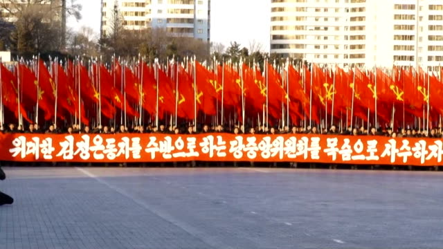 a mass rally was held in north korean capital pyongyang on january 5 in which senior politicians urged to fulfill the tasks laid out by supreme... - 北朝鮮点の映像素材/bロール