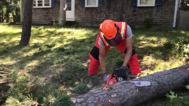 vídeos de stock e filmes b-roll de massachusetts air national guard civil engineer squadron clear fallen trees and debris in dennis port, massachussetts in the wake of three tornadoes... - protetor de ouvido