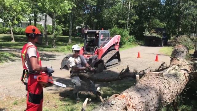 vídeos de stock e filmes b-roll de massachusetts air national guard civil engineer squadron clear fallen trees and debris in dennis port massachussetts in the wake of three tornadoes... - engenheiro civil