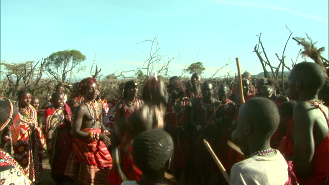 massai men bounce and jump during a tribal dance in africa. - warrior person stock videos & royalty-free footage