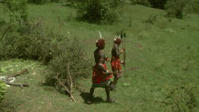 massai warriors walk on a grassy savanna in africa. - krieger menschliche tätigkeit stock-videos und b-roll-filmmaterial