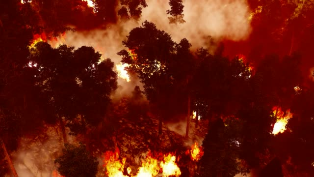 massive forest fire in mountains - forest fire stock videos & royalty-free footage