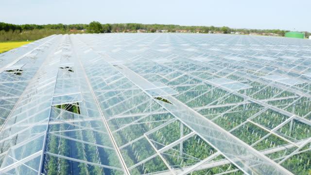 aerial massives gewächshaus für den anbau von tomaten neben einer autobahn - gewächshäuser stock-videos und b-roll-filmmaterial