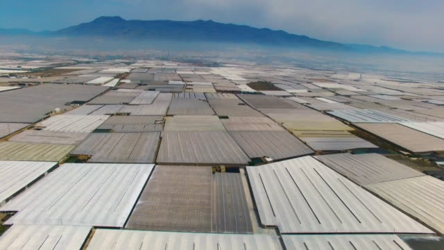 vidéos et rushes de massive plastic greenhouses dominate the landscape near almeria in spain - spain