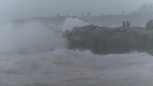 massive waves crash on a rocky shoreline along the cape of good hope in south africa. available in hd. - ケープ半島点の映像素材/bロール