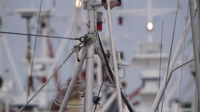 masts of fishing boats in harbour, andenes, norway - tauwerk stock-videos und b-roll-filmmaterial
