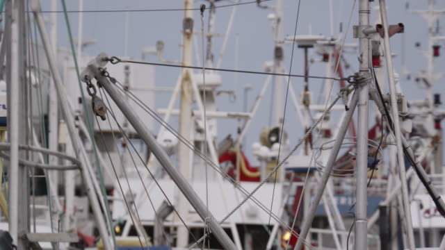 masts of fishing boats in harbour, andenes, norway - 船の一部点の映像素材/bロール