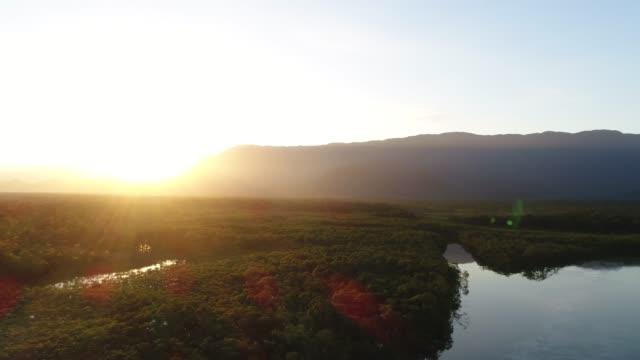 mata atlantica - atlantic forest in boraceia, sao paulo, brazil - valle video stock e b–roll