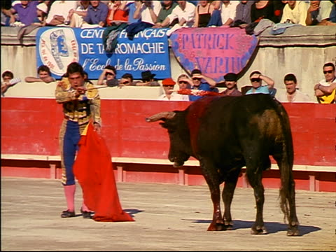 matador plunging sword into bloody bull + running away / zoom out to wide shot of crowded stadium - knife crime stock videos & royalty-free footage
