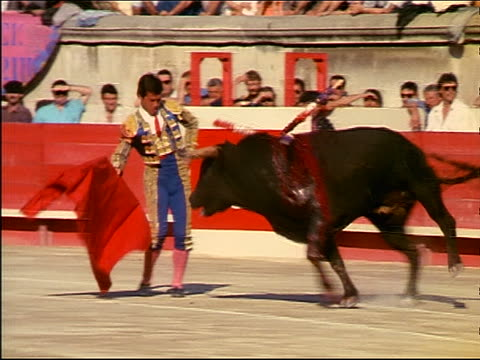 matador using red cape to taunt charging bloody bull with banderillas in neck / audience in background - bullfighter stock videos & royalty-free footage