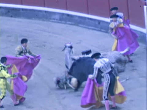 ts matadors challenging bull with capes in the plaza de toros / ronda, malaga, spain - bullfighter stock videos & royalty-free footage