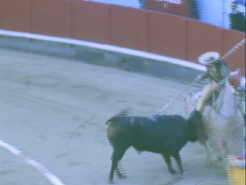 HA Matadors fighting bull with capes and spears in the Plaza de Toros / Ronda, Malaga, Spain