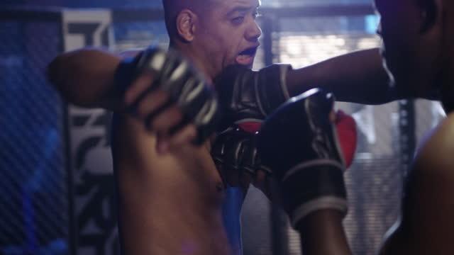 vídeos de stock e filmes b-roll de a match made in kickboxing heaven - jaula