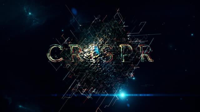 crispr matrix cube - biomedical illustration stock videos & royalty-free footage
