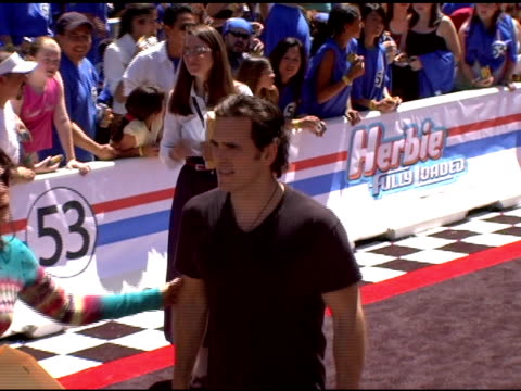 Matt Dillon at the 'Herbie Fully Loaded' Los Angeles Premiere at the El Capitan Theatre in Hollywood California on June 19 2005