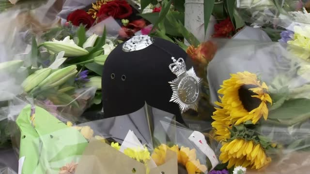 local rugby club pay tribute england west sussex east grinstead ext new zealand and all blacks flags flying tilt down floral tributes police helmet... - tilt down stock videos & royalty-free footage
