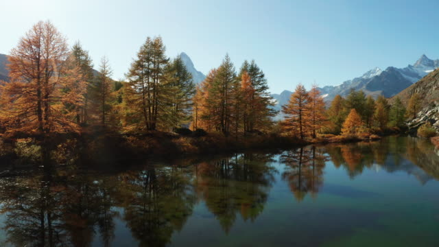 matterhorn peak with golden larches and grindjisee lake in zermatt, switzerland. - リフレクション湖点の映像素材/bロール