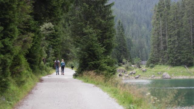 Reife Erwachsene paar mit Hunden zu Fuß vom See