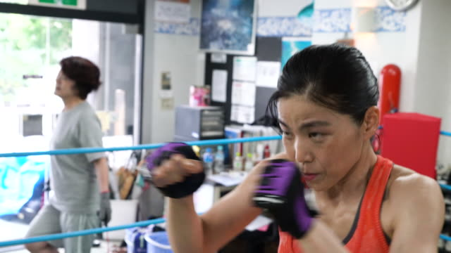 mature adult woman training at boxing gym - mature adult stock videos & royalty-free footage