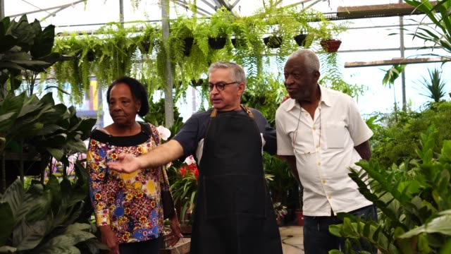 mature african couple customer buying at flower market - florist stock videos & royalty-free footage