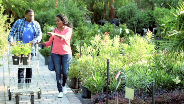 Mature African-American couple shopping at plant nursery