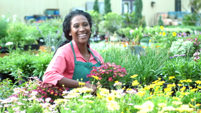 mature african-american woman working in plant nursery - garden center stock videos and b-roll footage