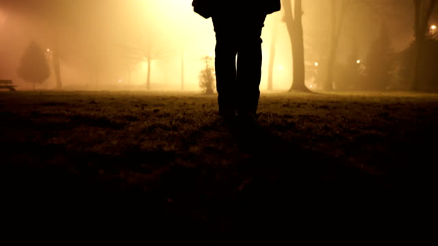 mature age women walk  through misty public park at night.close up - solitude stock videos & royalty-free footage