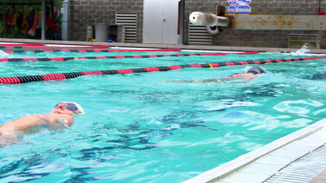 ms mature athletes swimming during early morning workout in outdoor pool - 50 59 years stock videos and b-roll footage