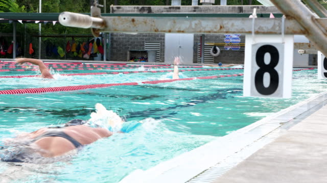 vidéos et rushes de ms mature athletes swimming during early morning workout in outdoor pool - chiffre 8