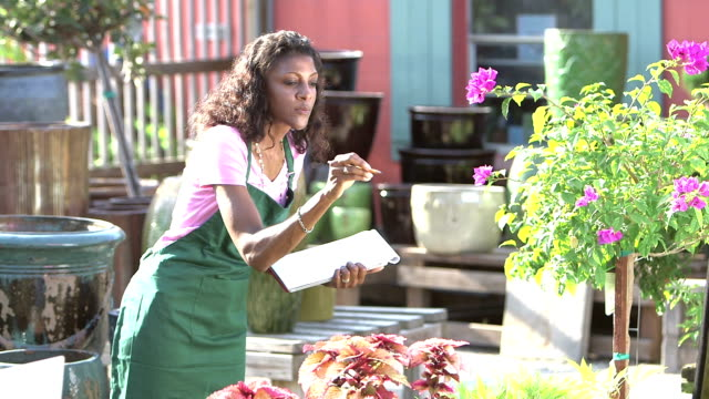 mature black woman in plant nursery taking inventory - garden center stock videos and b-roll footage