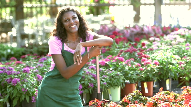 mature black woman working in plant nursery - garden centre stock videos & royalty-free footage