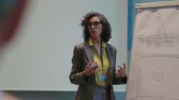Mature businesswoman explaining during seminar