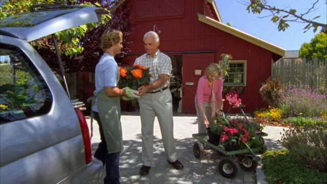 ws, mature couple and young sales clerk loading plants into car in garden center, cambria, california, usa - garden center stock videos and b-roll footage