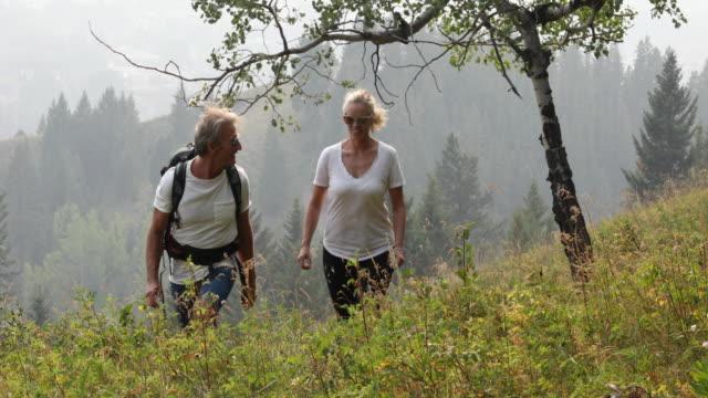 mature couple ascend grassy ridge crest - t shirt stock videos & royalty-free footage