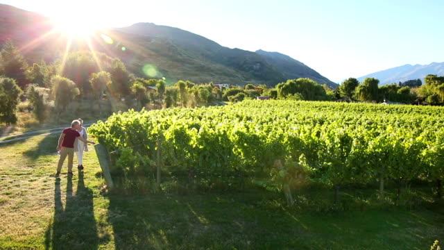 mature couple explore mountain vineyard - weinberg stock-videos und b-roll-filmmaterial