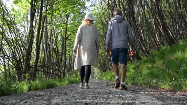 vídeos de stock e filmes b-roll de mature couple follow paved track through hardwood forest - calções