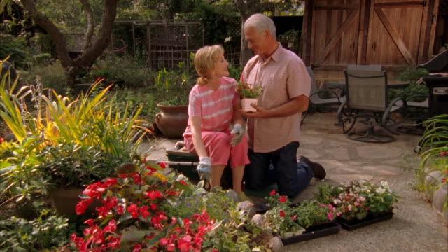 ws, mature couple gardening, cambria, california, usa - trädgårdshandske bildbanksvideor och videomaterial från bakom kulisserna