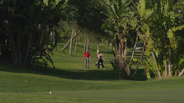 ls mature couple of golfers on fairway, woman plays ball to camera, red r3d 4k - golf glove stock videos and b-roll footage