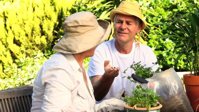 mature couple potting plants / cape town, western cape, south africa - trädgårdshandske bildbanksvideor och videomaterial från bakom kulisserna
