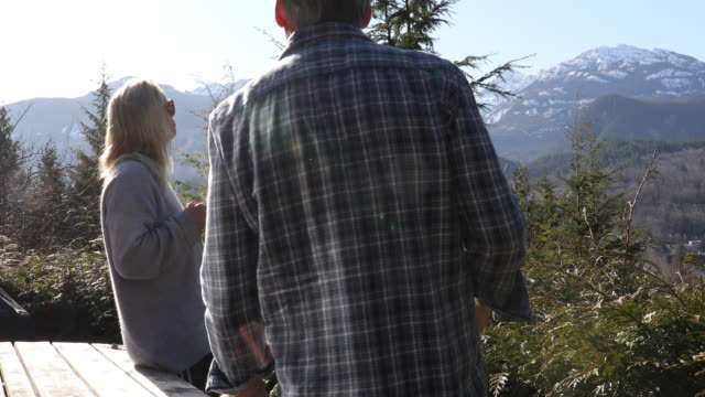 mature couple relaxes at mountain overlook - plaid shirt stock videos & royalty-free footage