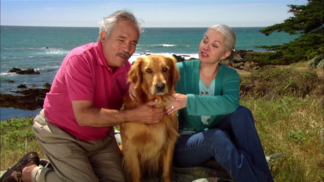 stockvideo's en b-roll-footage met cu, mature couple sitting at seashore with golden retriever, portrait, moonstone beach, cambria, california, usa - noordelijke grote oceaan