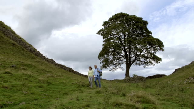 mature couple visiting sycamore gap - north east england stock videos & royalty-free footage