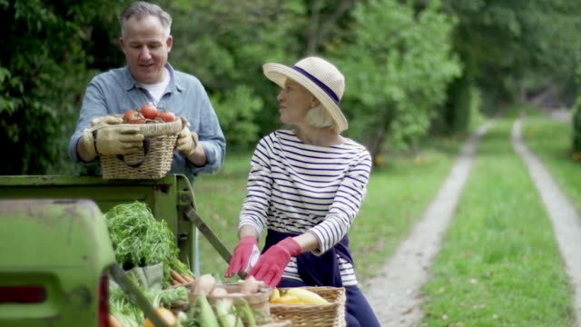 mature couple with baskets of harvested vegetables. - active lifestyle stock videos & royalty-free footage