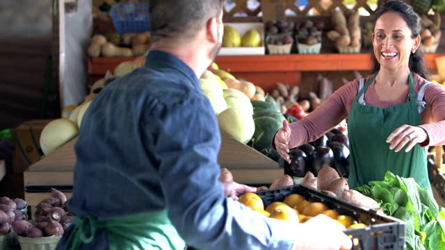 mature couple working at produce stand - giving stock videos & royalty-free footage