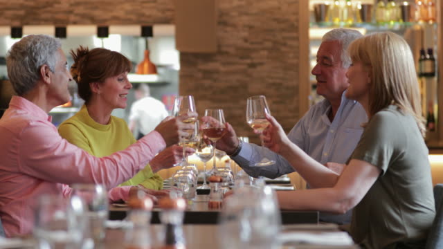 vídeos de stock e filmes b-roll de mature couples toasting at meal - adulto maduro
