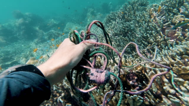 mature female environmentalist scuba diver removing plastic pollution from the ocean garbage patch - undersea stock videos & royalty-free footage