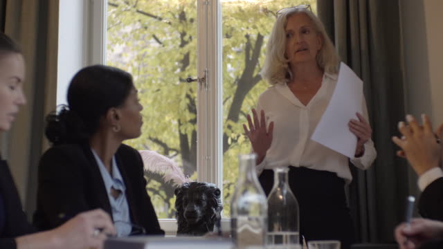 mature female lawyer explaining document to coworkers in meeting at law firm - verantwortung stock-videos und b-roll-filmmaterial