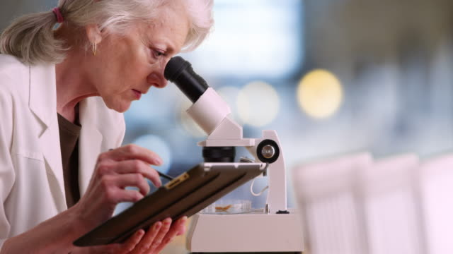 mature female scientist takes notes on tablet computer and uses microscope - 科学技術点の映像素材/bロール