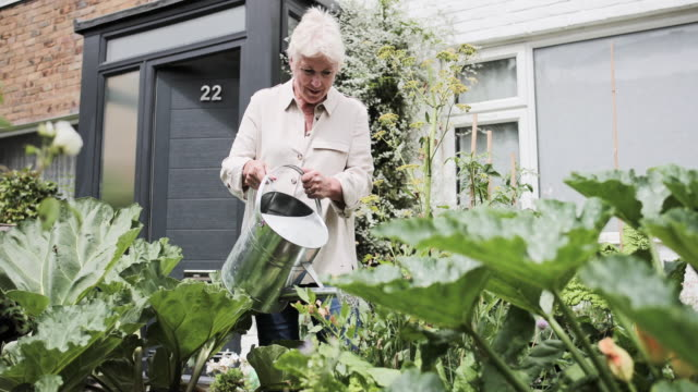 Mature female watering gardening
