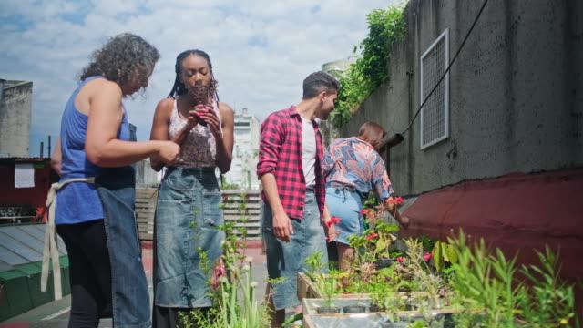 mature hispanic gardener educating young community members - community garden stock videos & royalty-free footage